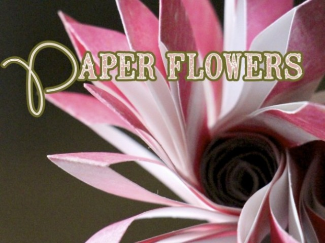 Paper Flowers: Valentines Day