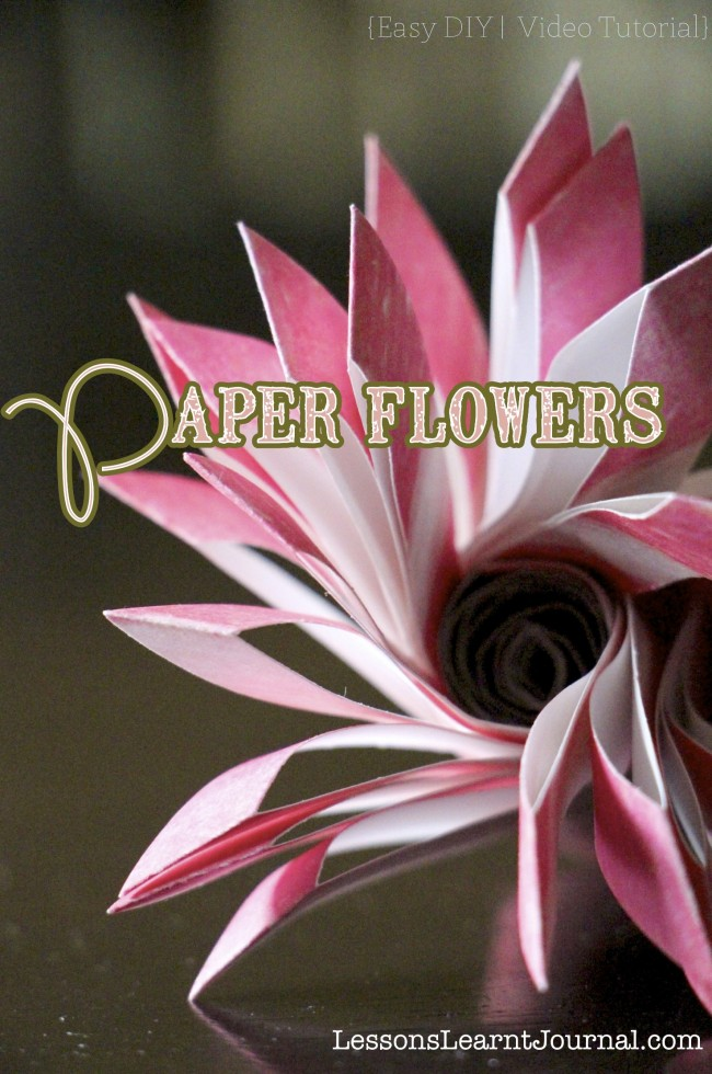 Paper Flowers Valentines Day