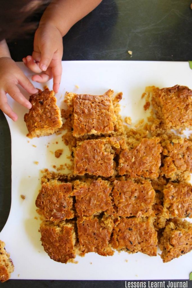 Lunch Ideas Honey Muesli Slices via Lessons Learnt Journal 06