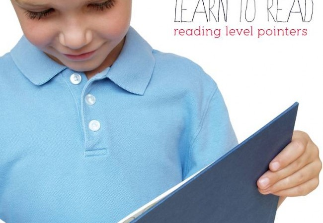 Learn to Read Reading Level Pointers via Lessons Learnt Journal