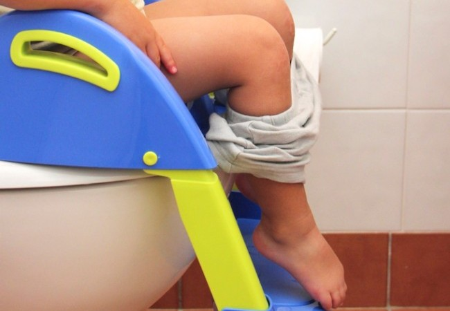 How To Potty Train Essential Equipment via Lessons Learnt Journal